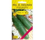 HolmanF1 Linda Mix okurky salátovky 1,5 g