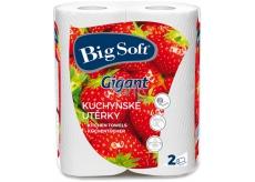 Big Soft Gigant papírové utěrky 80 utěrek 2 kusy