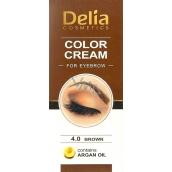 Delia Color Cream barvící krém na obočí s arganovým olejem 4.0 Brown 15 ml + 15 ml