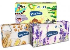 Big Soft Deluxe kosmetické papírové ubrousky 2 vrstvé v krabičce 100 kusů