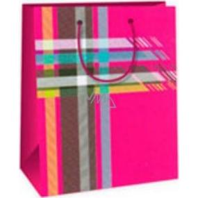 Ditipo Dárková papírová taška střední růžová - barevné káro 18 x 10 x 22,7 cm DC