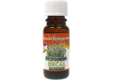 Slow-Natur Brčál Vonný olej 10 ml