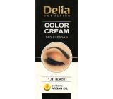 Delia Color Cream barvící krém na obočí s arganovým olejem 1.0 Black 15 ml + 15 ml