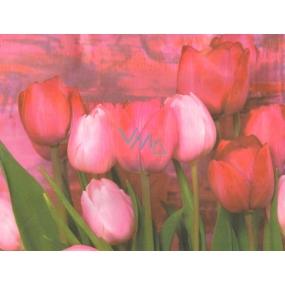 Nekupto Dárková kraftová taška malá 23 x 18 x 10 cm Tulipány 1 kus 241 CM