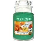 Yankee Candle Alfresco Afternoon - Alfresco odpoledne vonná svíčka Classic velká sklo 623 g