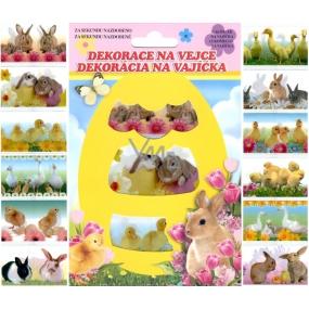 Fólie na vejce živá zvířátka, 12 kusů v balení (smršťovací košilky)