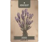Bohemia Gifts & Cosmetics Aromatická vonná karta Aromatherapy 10,5 x 16 cm