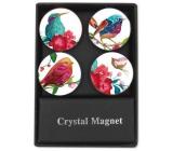 Albi Krystalové magnetky Ptáčci 4 kusy