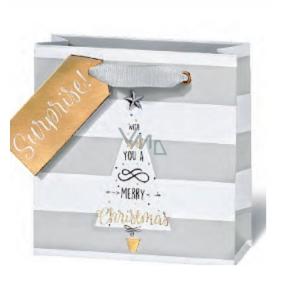 BSB Luxusní dárková papírová taška 14,5 x 15 x 6 cm Vánoční VDT 428 - CD