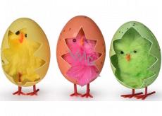 Kuře ve vajíčku barevné 3 kusy v krabičce