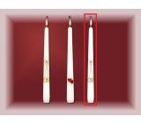Lima Svatební svíce Stříbrné prstýnky svíčka bílá kužel 22 x 250 mm