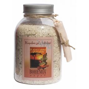 Bohemia Natur Skořice a akát s afrodiziakální vůní koupelová sůl 1,2 kg