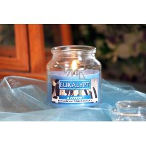 Lima Aroma Dreams Eukalypt aromatická svíčka sklenička s víčkem 300 g
