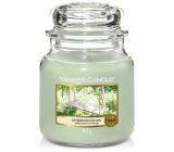 Yankee Candle Afternoon Escape - Odpolední únik vonná svíčka Classic střední sklo 411 g