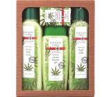 Bohemia Herbs Cannabis Konopný olej sprchový gel 300 ml + koupelová sůl 600 g + pěna do koupele 500 ml + mýdlo 100 g, kosmetická sada