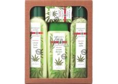 Bohemia Gifts & Cosmetics Cannabis Konopný olej sprchový gel 300 ml + koupelová sůl 600 g + pěna do koupele 500 ml + mýdlo 100 g, kosmetická sada