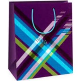 Ditipo Dárková papírová taška střední modrá - barevné káro 18 x 10 x 22,7 cm DC