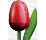Bohemia Gifts Dřevěný tulipán červeno-bílý 20 cm