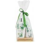 Bohemia Gifts & Cosmetics Cannabis Konopný olej tekuté mýdlo 300 ml + tělové mléko 250 ml + tuhé mýdlo 100 g, dřevěná paleta kosmetická sada