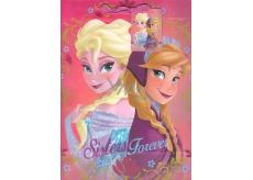 Ditipo Disney Dárková papírová taška dětská L Elsa a Anna, Sisters Forever 26,4 x 12 x 32,4 cm