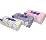Linteo Satin papírové kapesníčky 2 vrstvé 200 kusů
