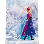 BSB Disney Dárková papírová taška dětská 22,9 x 17,5 x 9,8 cm Frozen s glitry DT M