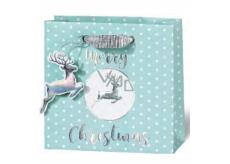 BSB Luxusní vánoční dárková papírová taška 23 x 19 x 9 cm VDT 430 - A5