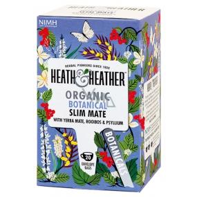 H&H BIO Detoxikační Maté a Psyllium čaj pro přirozený úbytek hmotnosti n.s. 20 x 2g