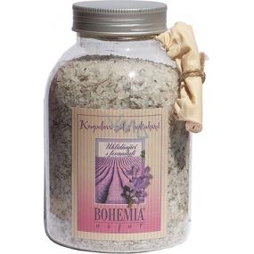 Bohemia Gifts Levandule s bylinkami Uklidňující sůl do koupele 1,2 kg
