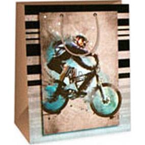 Ditipo Dárková papírová taška 26,4 x 13,7 x 32,4 cm hnědá cyklista AB