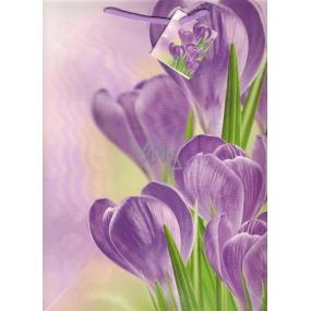 Nekupto Dárková papírová taška střední 1019 40 KFL fialový krokus 32,5 x 26 x 13 cm
