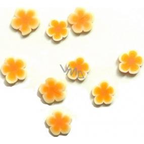 Professional Ozdoby na nehty květiny oranžovo-bílé 132 1 balení