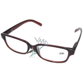 Berkeley Čtecí dioptrické brýle +1,50 plastové hnědé 1 kus MC2125