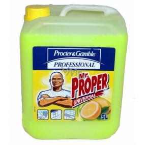 Mr. Proper Profesionál Lemon Univerzální čistič 5 l