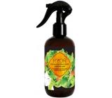 Ryor Hair Care Urychlovač růstu vlasů 3 měsíční kúra sprej 250 ml