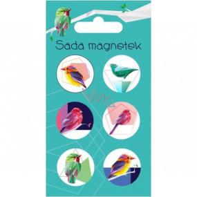 Albi Sada Magnetů Ptáčci 6 kusů