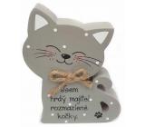 Nekupto Mazlíčci Dřevěná cedulka Jsem hrdý majitel rozmazlené kočky 12 x 9 x 1,5 cm