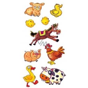 Tetování barevné s koněm 16,5 x 10,5 cm 1 kus