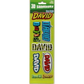 Nekupto 3D Samolepky se jménem David 8 kusů 022