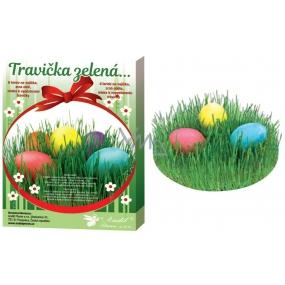 Dekorování vajíček Travička zelená sada