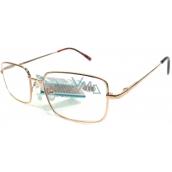 Berkeley Čtecí dioptrické brýle +2,5 zlaté kov MC2 1 kus ER5050