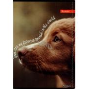 Ditipo Sešit Premium Collection A5 linkovaný Pes 14,5 x 20,5 cm 3415007