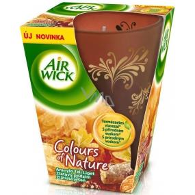 Air Wick Colours of Nature Zlatavý podzim Prémiová vonná svíčka ve skle 150 g