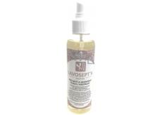 Amoené Lavosept K Citron roztok pro mytí a dezinfekci ploch a nástrojů pro profesionální použití 200 ml rozprašovač