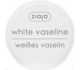 Ziaja Kosmetická vazelína pro všechny druhy pleti 30 ml