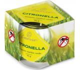 Emocio Dekor Citronella vonná svíčka sklo 70 x 62 mm 85 g