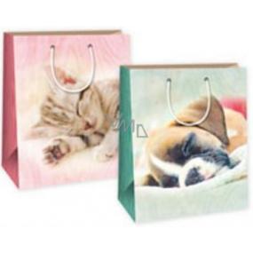 Ditipo Dárková papírová taška velká pejsek - kočička 26,4 x 13,6 x 32,7 cm DAB