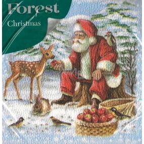 Forest Papírové ubrousky 1 vrstvé 33 x 33 cm 20 kusů Vánoční Santa a srneček
