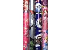 Disney Princess Vánoční balicí papír pro děti růžový Šípková Růženka 2 m x 70 cm