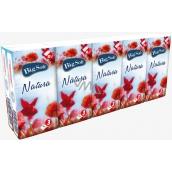 Big Soft Natura papírové kapesníky 3 vrstvé 10 x 10 kusů